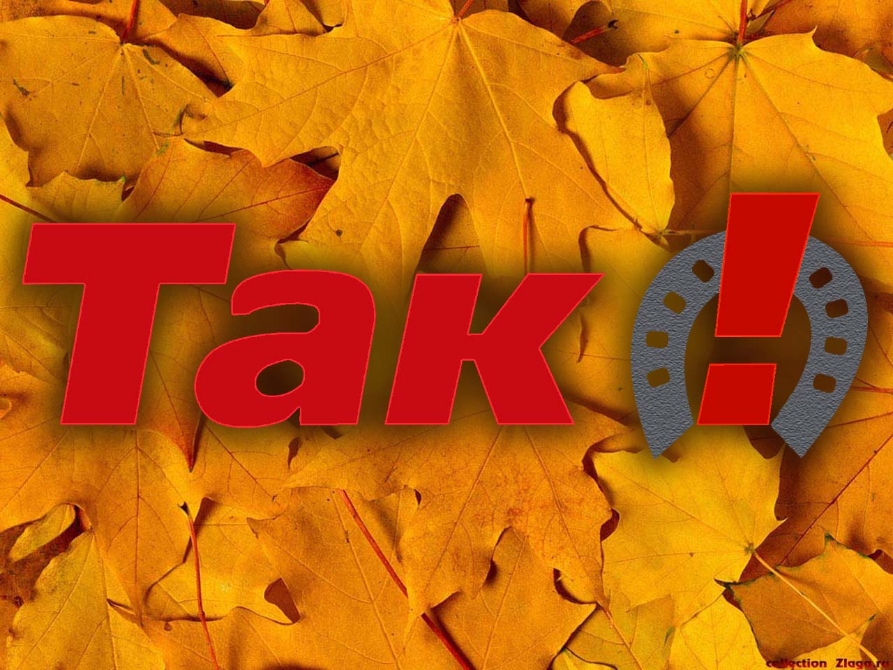 TAK!_autumn_leaves.jpg